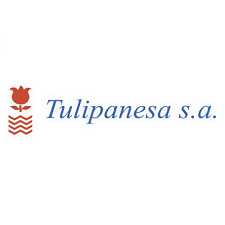 TULIPANESA